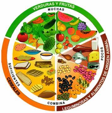 Recetas dieta 1400 calorias